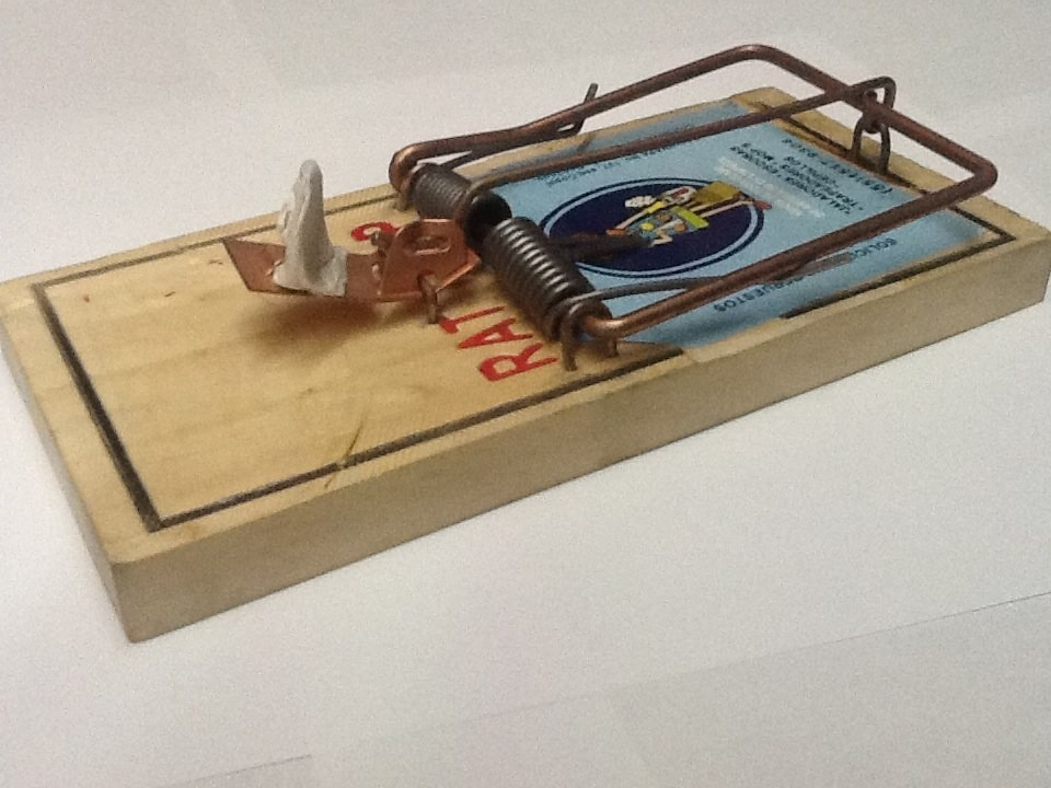 Ratoneras trampa incluye 3 cebos sirve para ratas y - Trampas para ratones y ratas ...