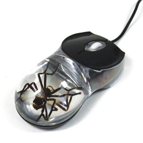 ratones,spider ratón de la computadora con fondo claro..