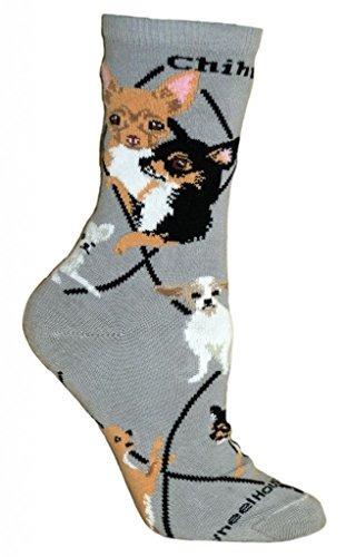 raza chihuahua perro de perrito del animal calcetines 9-11