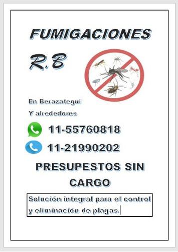 r.b fumigaciones - en berazategui y alrededores