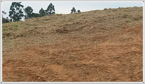rd-c temos o terreno ideal para você!