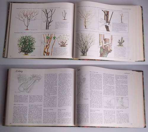 reader's digest illustrated guide to gardening in canada
