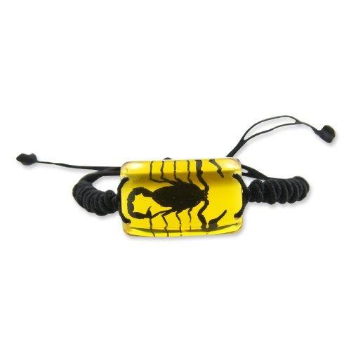 realbug brazalete de escorpión negro, ámbar