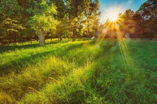 realize seu sonho de ter sua moradia, lazer ou investimento!