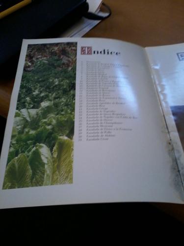 recetario de ensaladas - maggi