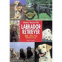 Libro, Manual Práctico De Labrador Retriever Richard Burrows