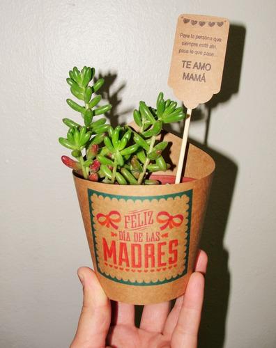 recuerdos cactus y suculenta/matrimonio- bautizo-corporativo