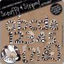 Kit Imprimible Numeros Y Letras Cebra Imagenes Clipart