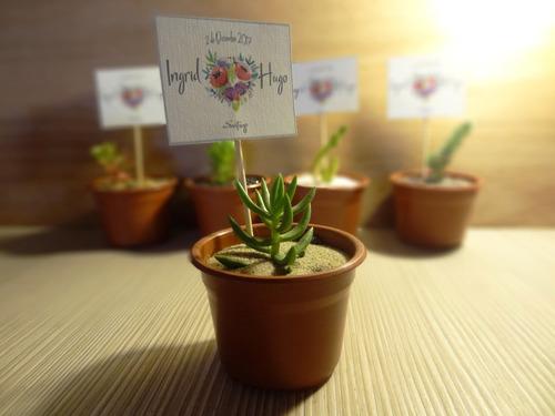 recuerdos matrimonios regalos cactus suculentas con mensaje