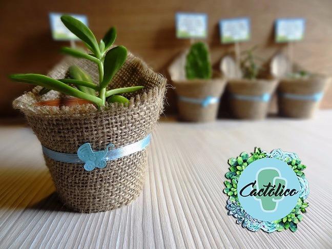 Recuerdos para baby shower cactus y suculentas para for Suculentas chile