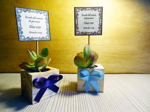recuerdos regalos matrimonios suculentas en madera nativa