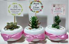 Recuerdos De Bautizo Con Cactus.Recuerdos Suculentas Cactus Matrimonio Baby Shower Bautizo