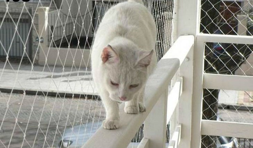 red malla de proteccion balcon ventanas niños mascotas