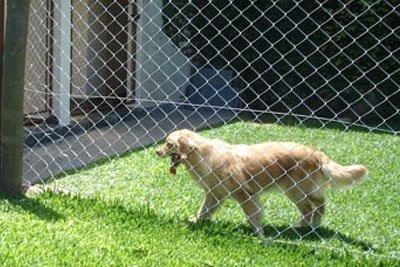 redes proteccion, para niños, gatos, bebés, mascotas