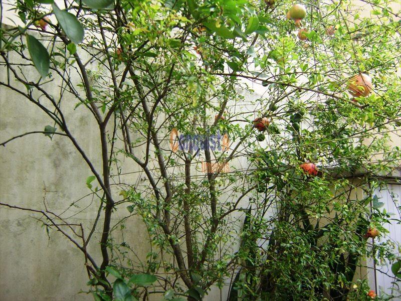 ref.: 112000 - casa em sao paulo, no bairro vila do bosque - 4 dormitórios