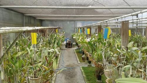 ref.: 175 - rural em embu guaçu, no bairro val flor - 1 dormitórios