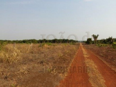 ref.: 278 - fazenda em xingu para venda - v278