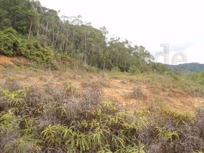 ref.: 284 - fazenda em cananeia para venda - v284