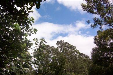ref.: 2875 - terreno em ibiuna, no bairro bunjiro nakao