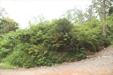 ref.: 3044 - terreno em cotia, no bairro granja viana
