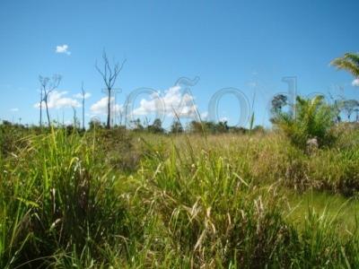 ref.: 376 - fazenda em sao josé do xingu para venda - v376