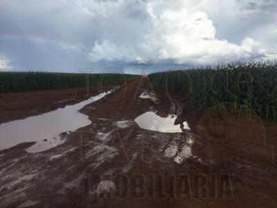 ref.: 390 - fazenda em tangará da serra para venda - v390