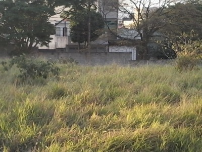 ref.: 5923 - terreno em osasco para aluguel - l5923