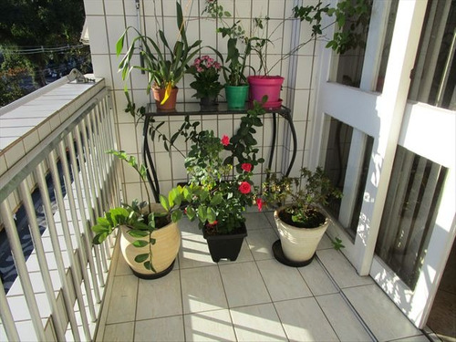 ref.: 7205 - apartamento em santos, no bairro boqueirao - 3 dormitórios