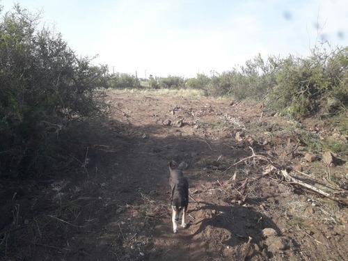 ref 889 venta de terreno en bilaet masse punilla cordoba