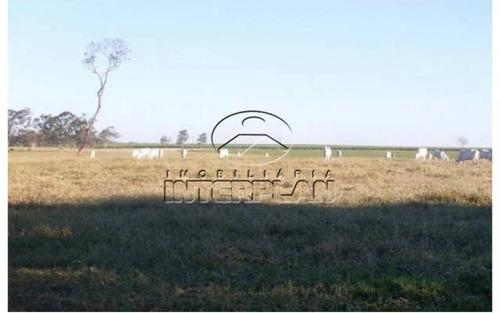 ref.: fa85047     tipo: fazenda     cidade: araçatuba - sp     bairro: rural