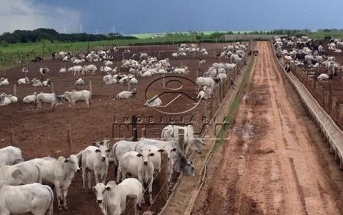 ref.: fa85062 tipo: fazenda cidade: araçatuba - sp bairro: rural