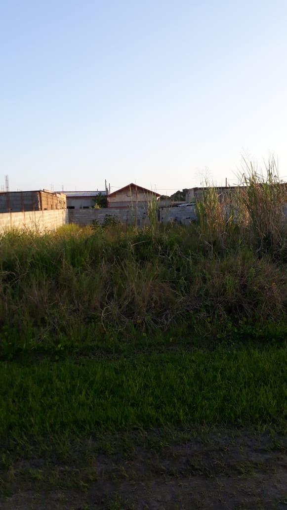 (ref:4236) terreno murado - jd jamaica - itanhaém