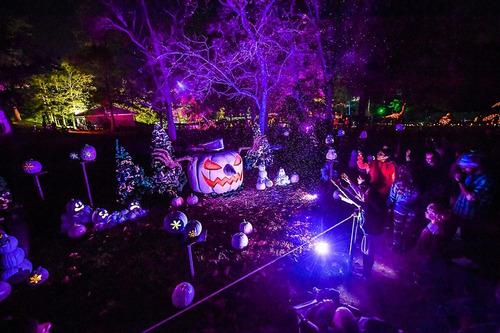 refletor led uv ultra violeta 20w luz negra balada festas