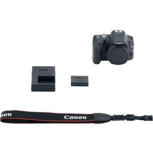 réflex digital cámara
