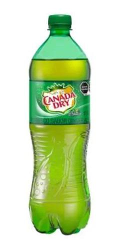 refresco canada dry sabor ginger ale 1 l