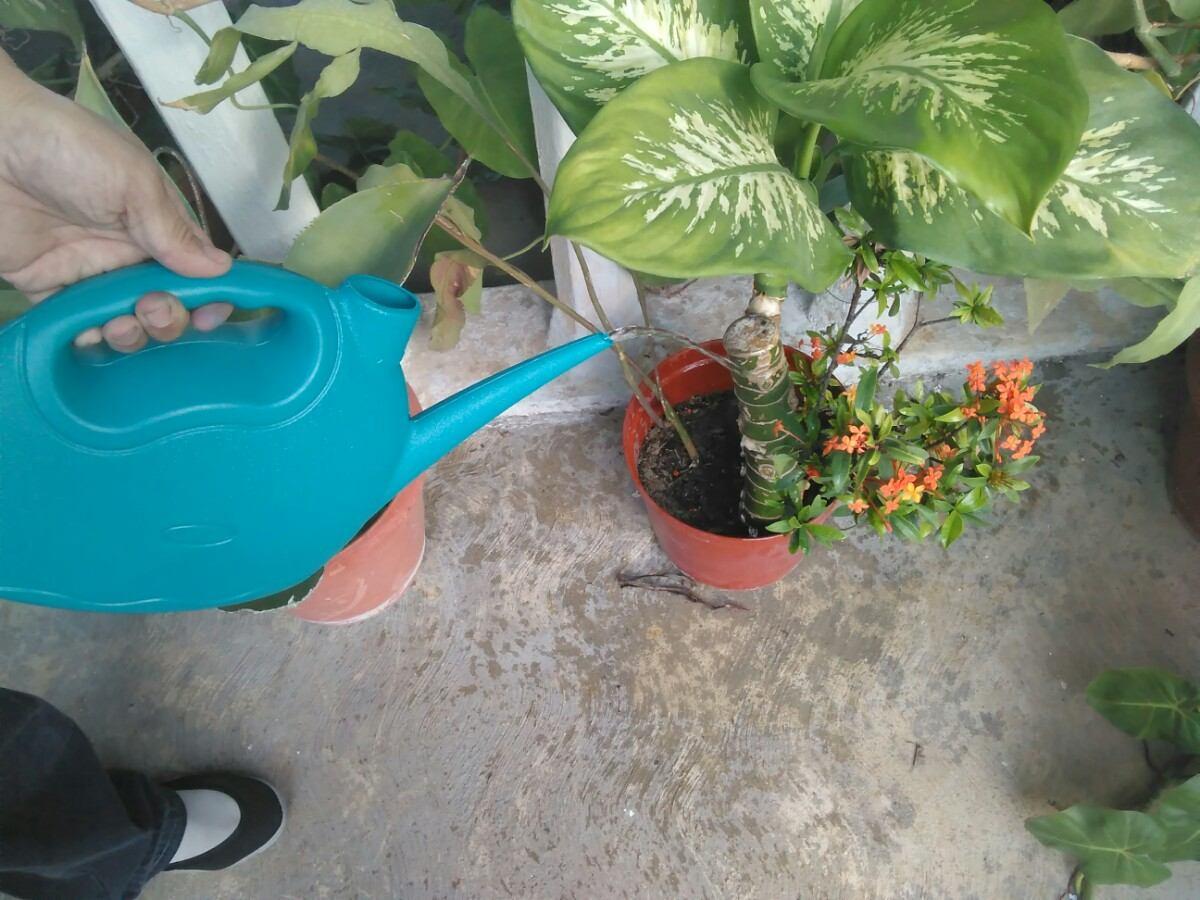 Regadera manual para jardin manaplas 3litros bs for Regaderas mercado libre