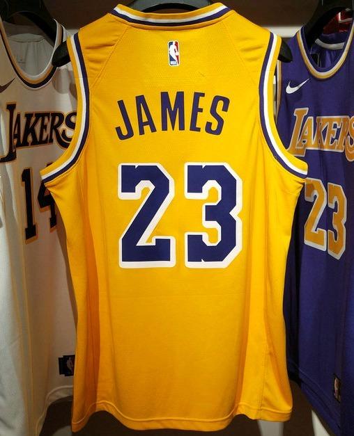 dbb8d769e Regata Nba Los Angeles Lakers - Lebron James - R  240