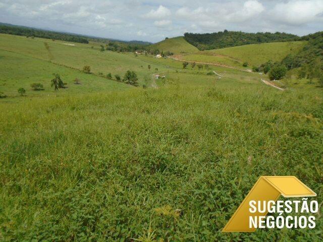 região de registro fazenda tradicional permuta - 3071