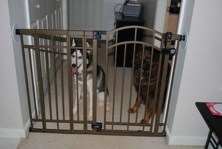 reja seguridad para puertas