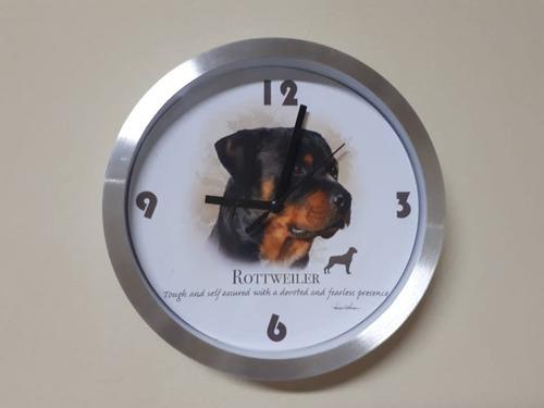 relojes de mascotas