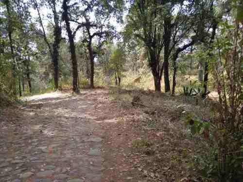 remate, bosque, guayacahuala oportunidad