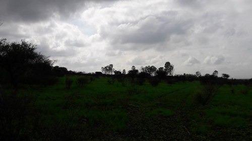 remate de 1 preciosa hectarea de terreno atrás de huertas la joya queretaro.