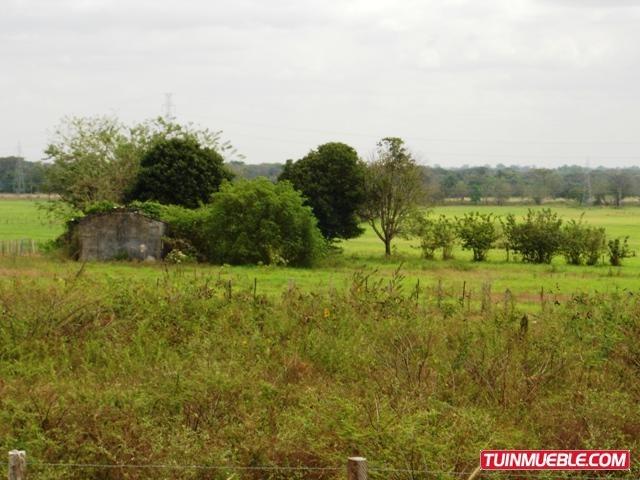 remax costa azul vende terreno en barinas - barinas