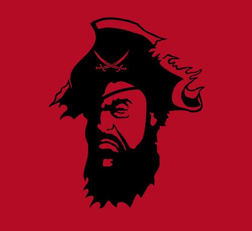 remera pirata - estampados con onda - diseño exclusivo