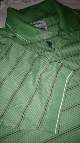 remeras chombas taverniti verde rayado originales