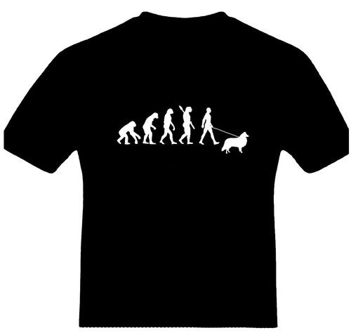 remeras evolución perros collie
