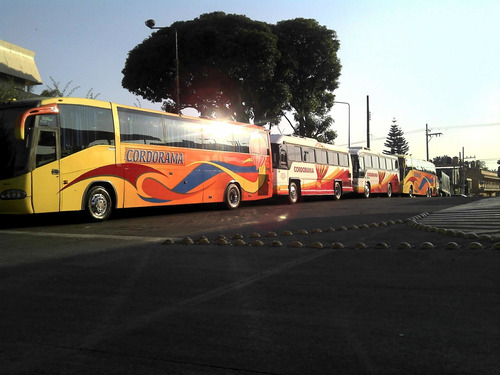 renta de autobuses, camionetas, coches, sprinters, escolares