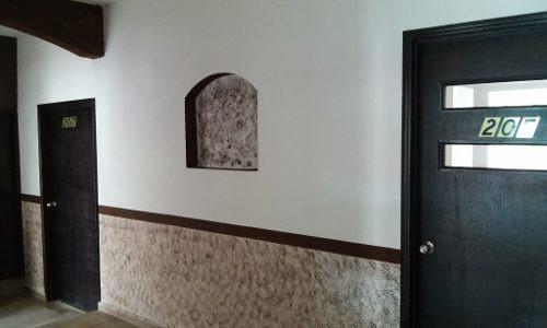 renta de local en ciudad madero, francisco sarabia (7)