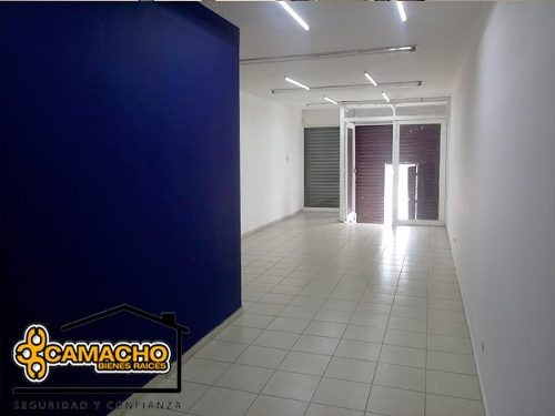 renta de local en colonia amor, puebla opl-0113