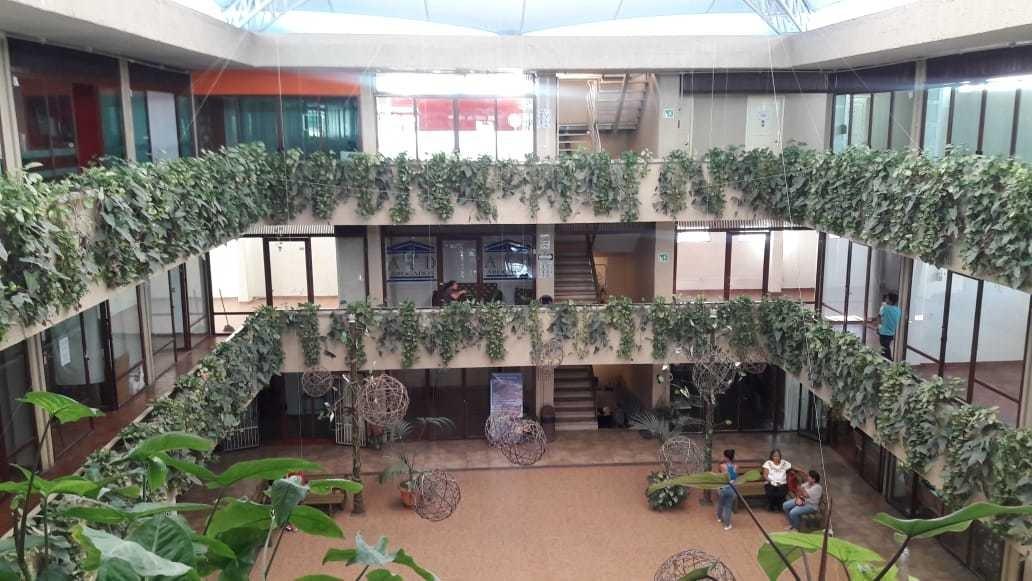 renta de locales comerciales (plaza yuliana)